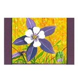 Colorado Columbine Postcards (Package of 8)