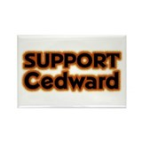Support Cedward Rectangle Magnet
