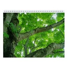 Virginia Trees Wall Calendar