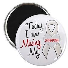 Missing My Grandma 1 PEARL Magnet