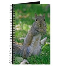 Hugs Grey Squirrel Wildlife Journal