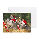 Wildlife christmas opossum Greeting Cards (20 Pack)