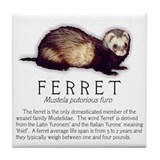 Ferret Breed Info Tile Coaster