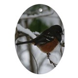 Spotted Towhee Oval Ornament