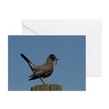 American Robin Greeting Cards (Pk of 20)