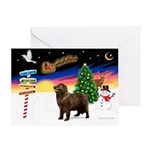 XmasSigns/Newfie Greeting Card