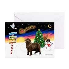 XmasSigns/Newfie Greeting Cards (Pk of 20)