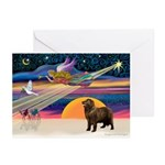 XmasStar/ Newfie Greeting Cards (Pk of 10)