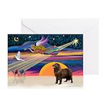 XmasStar/ Newfie Greeting Cards (Pk of 20)