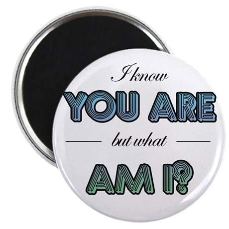 I know you are but what am I? Magnet