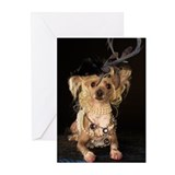 Crested Hairless Greeting Cards (Pk of 10)