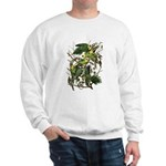 Audubon's Carolina Parakeet Sweatshirt