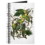 Audubon's Carolina Parakeet Journal