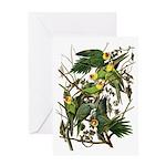 Audubon's Carolina Parakeet Greeting Card