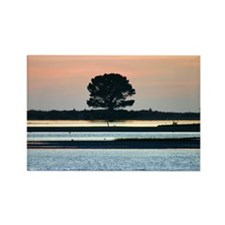 botanical photography - trees Rectangle Magnet (1