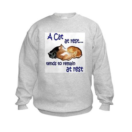 Laws of Physics Cats Kids Sweatshirt