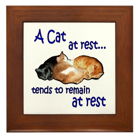 Laws of Physics Cats Framed Tile
