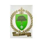 DUBOIS Family Crest Rectangle Magnet