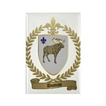 DUMAS Family Crest Rectangle Magnet (100 pack)