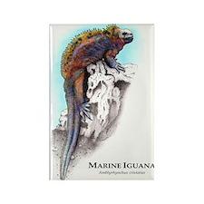 Marine Iguana Rectangle Magnet