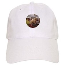 Red Rough Brussels Griffon Baseball Cap