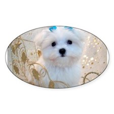 Maltese Blue Bows Oval Sticker (50 pk)