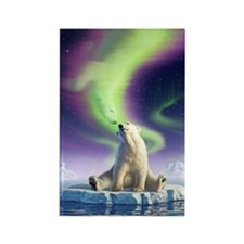 Arctic Kiss 1 Rectangle Magnet