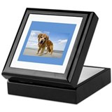 BEACH DOG Keepsake Box