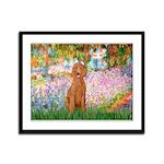 Garden/Std Poodle (apricot) Framed Panel Print