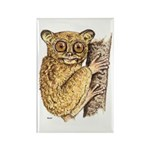Tarsier Rain Forest Rectangle Magnet
