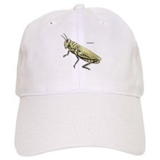 Grasshopper Insect Baseball Cap