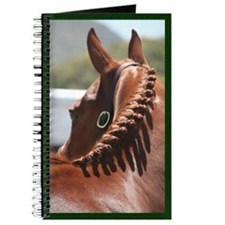Braided English Horse Journal
