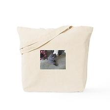 Unique British shorthair Tote Bag