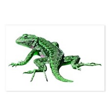 Green Lizard Postcards (Package of 8)