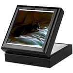 Darkside of Precious the DOG Keepsake Box