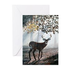 Misty Morning Greeting Cards (Pk of 10)