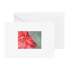 Winter Poinsettia Greeting Cards (Pk of 10)
