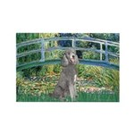 Bridge/Std Poodle silver) Rectangle Magnet (10 pac
