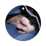 Pocket Possum Ornament (Round)