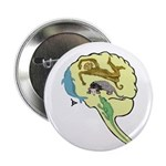Evolved Brain-b 2.25&quot; Button (100 pack)
