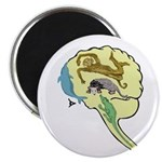 Evolved Brain-b MAGNET