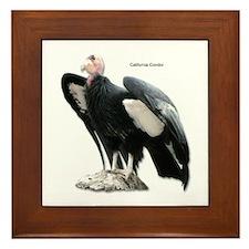 California Condor Framed Tile