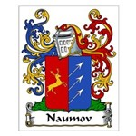 Naumov Family Crest Small Poster