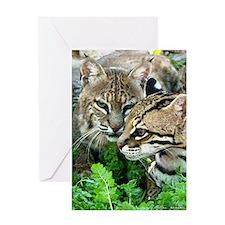Bobcat & Ocelot Valentines Card