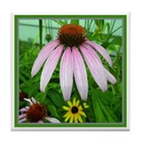 Single Coneflower Tile Coaster