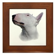 Bull Terrier Framed Tile