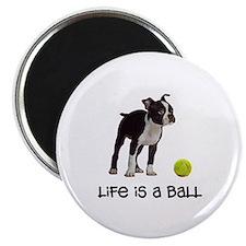 Boston Terrier Life Magnet