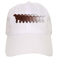 Chocolate Lab Gradient Cap