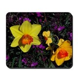 DAFFY PHLOX Mousepad