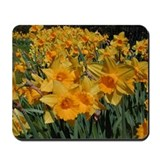 DAFFY Mousepad